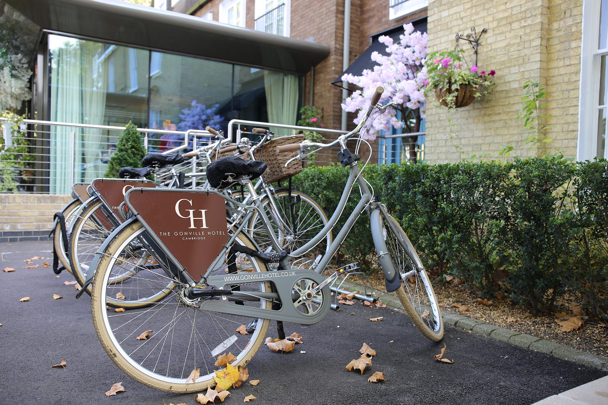Bicycles at Gonville Hotel